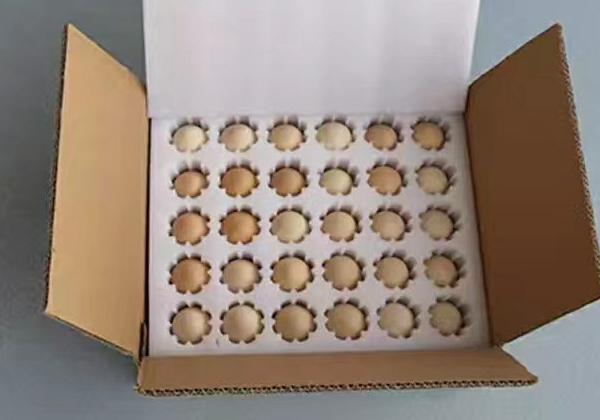 珍珠棉-定位包装-鸡蛋、高档水果
