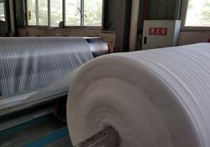 珍珠棉-卷材生产 (3)